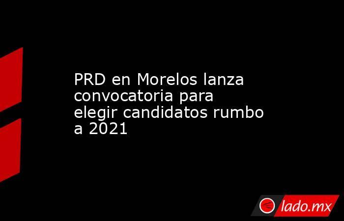 PRD en Morelos lanza convocatoria para elegir candidatos rumbo a 2021. Noticias en tiempo real