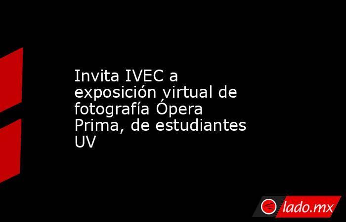 Invita IVEC a exposición virtual de fotografía Ópera Prima, de estudiantes UV. Noticias en tiempo real