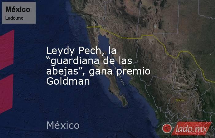 """Leydy Pech, la """"guardiana de las abejas"""", gana premio Goldman. Noticias en tiempo real"""