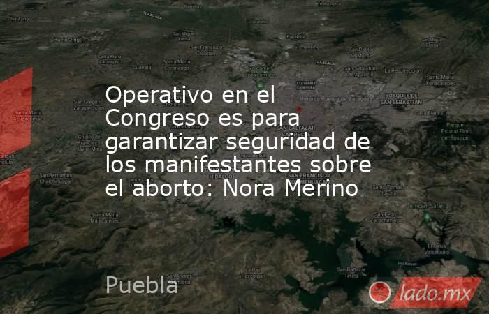 Operativo en el Congreso es para garantizar seguridad de los manifestantes sobre el aborto: Nora Merino. Noticias en tiempo real