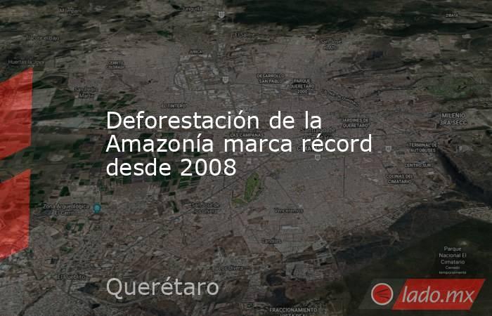 Deforestación de la Amazonía marca récord desde 2008. Noticias en tiempo real