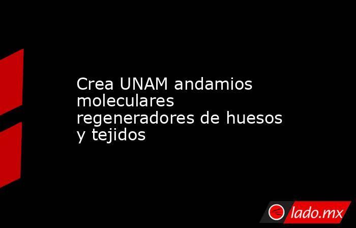 Crea UNAM andamios moleculares regeneradores de huesos y tejidos. Noticias en tiempo real