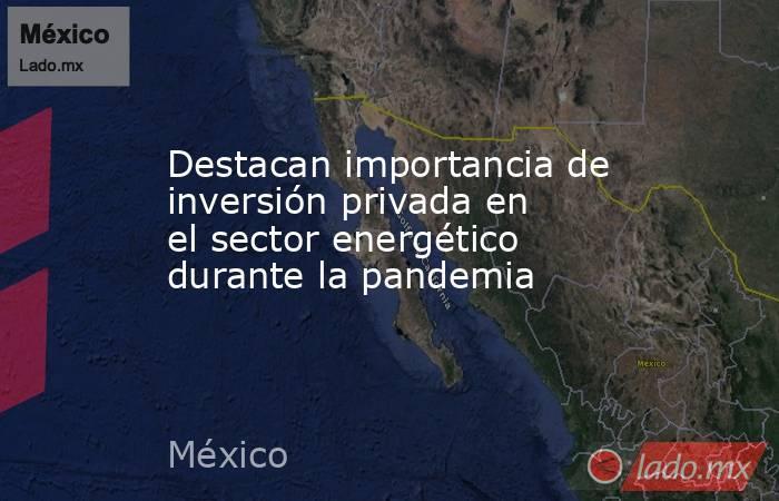 Destacan importancia de inversión privada en el sector energético durante la pandemia. Noticias en tiempo real