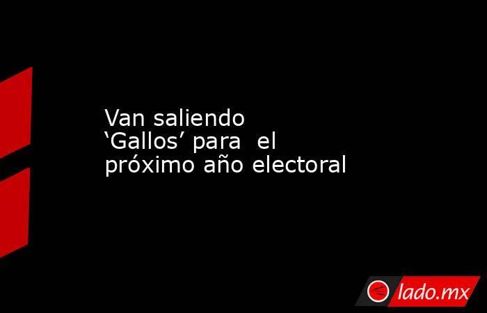 Van saliendo 'Gallos' para  el próximo año electoral. Noticias en tiempo real