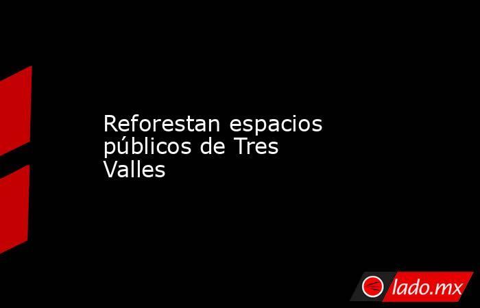 Reforestan espacios públicos de Tres Valles. Noticias en tiempo real