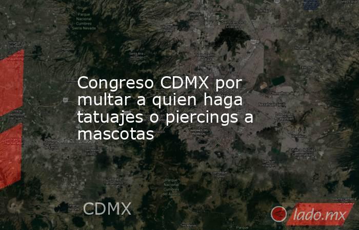 Congreso CDMX por multar a quien haga tatuajes o piercings a mascotas. Noticias en tiempo real