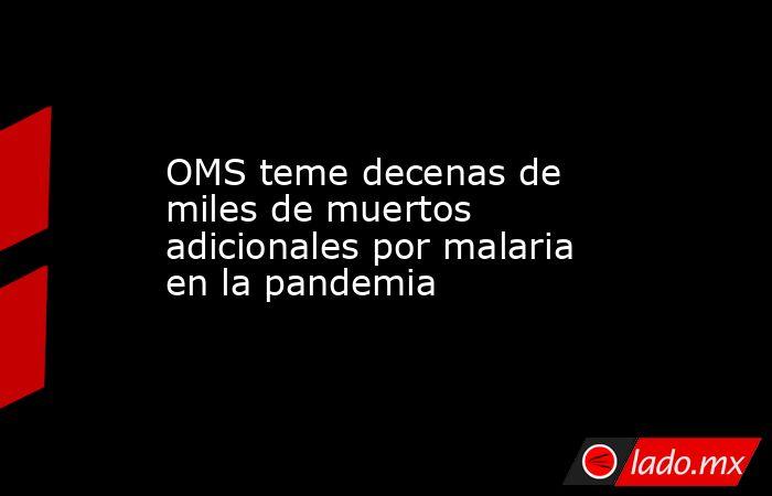 OMS teme decenas de miles de muertos adicionales por malaria en la pandemia. Noticias en tiempo real