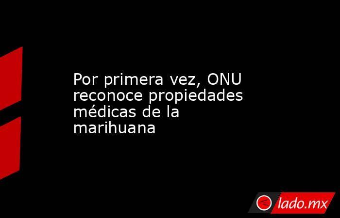 Por primera vez, ONU reconoce propiedades médicas de la marihuana. Noticias en tiempo real