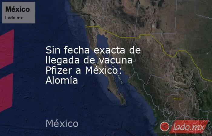 Sin fecha exacta de llegada de vacuna Pfizer a México: Alomía. Noticias en tiempo real