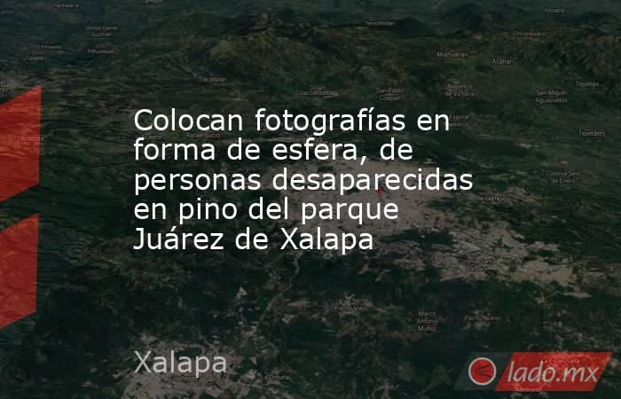Colocan fotografías en forma de esfera, de personas desaparecidas en pino del parque Juárez de Xalapa. Noticias en tiempo real