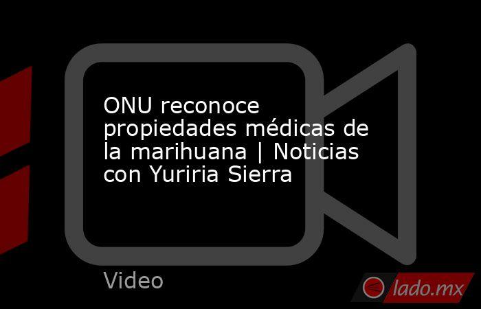 ONU reconoce propiedades médicas de la marihuana   Noticias con Yuriria Sierra. Noticias en tiempo real