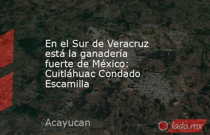 En el Sur de Veracruz está la ganadería fuerte de México: Cuitláhuac Condado Escamilla. Noticias en tiempo real