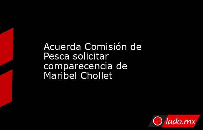 Acuerda Comisión de Pesca solicitar comparecencia de Maribel Chollet. Noticias en tiempo real