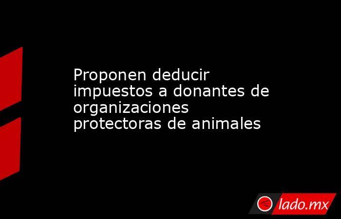 Proponen deducir impuestos a donantes de organizaciones protectoras de animales. Noticias en tiempo real