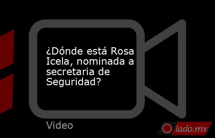 ¿Dónde está Rosa Icela, nominada a secretaria de Seguridad?. Noticias en tiempo real