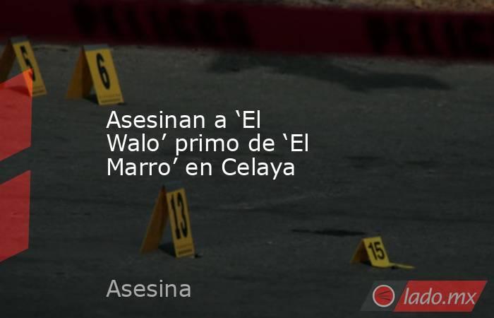 Asesinan a 'El Walo' primo de 'El Marro' en Celaya. Noticias en tiempo real