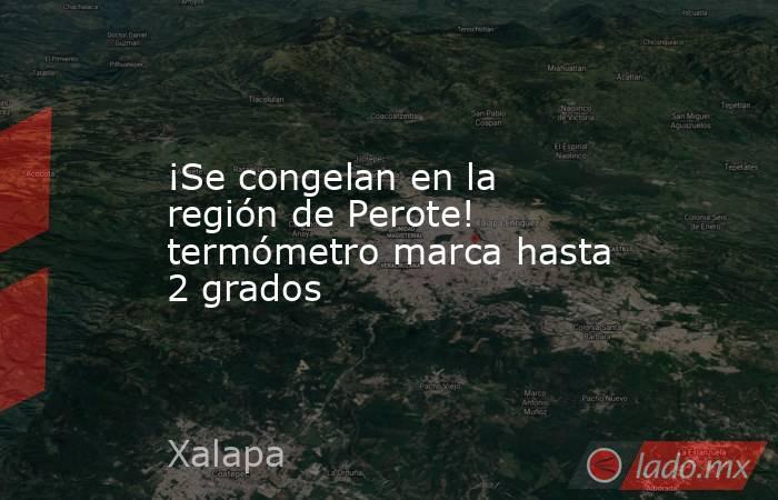 ¡Se congelan en la región de Perote! termómetro marca hasta 2 grados. Noticias en tiempo real