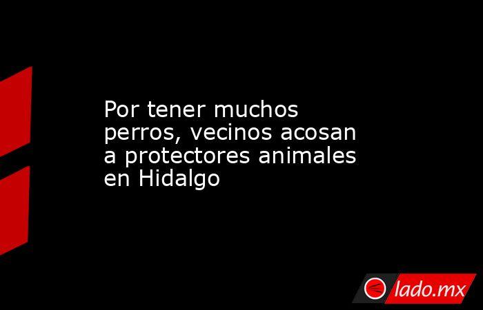 Por tener muchos perros, vecinos acosan a protectores animales en Hidalgo. Noticias en tiempo real