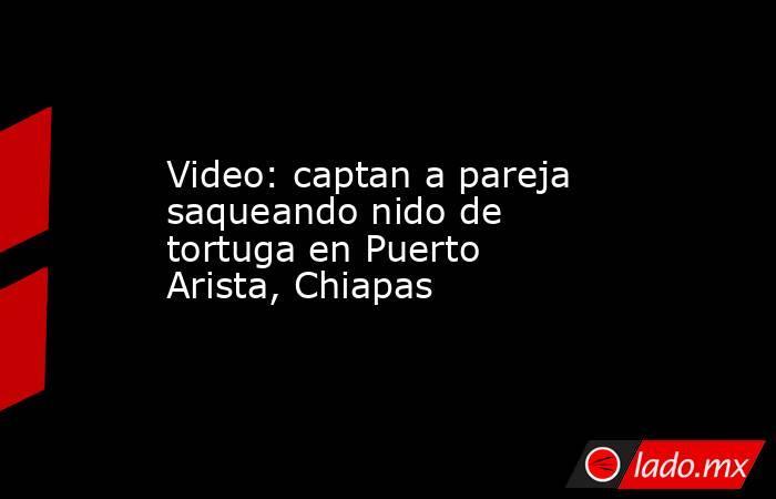 Video: captan a pareja saqueando nido de tortuga en Puerto Arista, Chiapas. Noticias en tiempo real