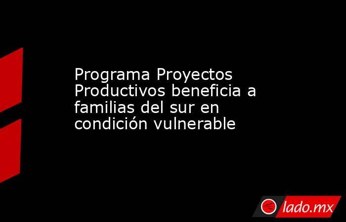Programa Proyectos Productivos beneficia a familias del sur en condición vulnerable. Noticias en tiempo real