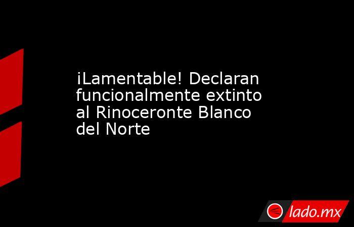 ¡Lamentable! Declaran funcionalmente extinto al Rinoceronte Blanco del Norte. Noticias en tiempo real