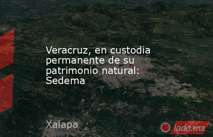 Veracruz, en custodia permanente de su patrimonio natural: Sedema. Noticias en tiempo real