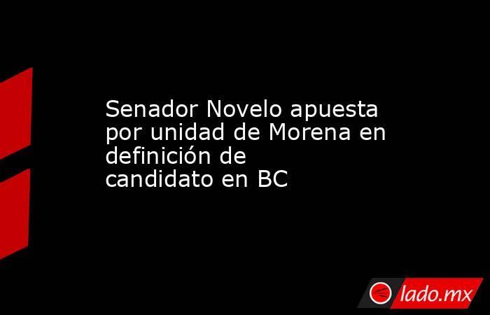 Senador Novelo apuesta por unidad de Morena en definición de candidato en BC. Noticias en tiempo real