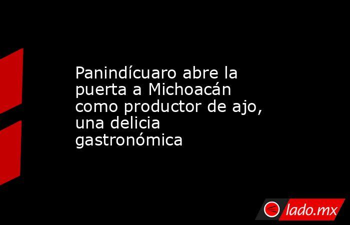 Panindícuaro abre la puerta a Michoacán como productor de ajo, una delicia gastronómica. Noticias en tiempo real