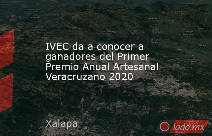IVEC da a conocer a ganadores del Primer Premio Anual Artesanal Veracruzano 2020. Noticias en tiempo real