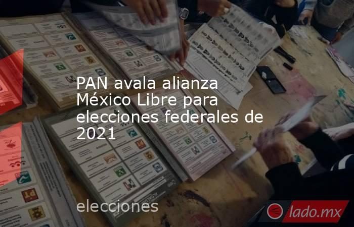 PAN avala alianza México Libre para elecciones federales de 2021. Noticias en tiempo real