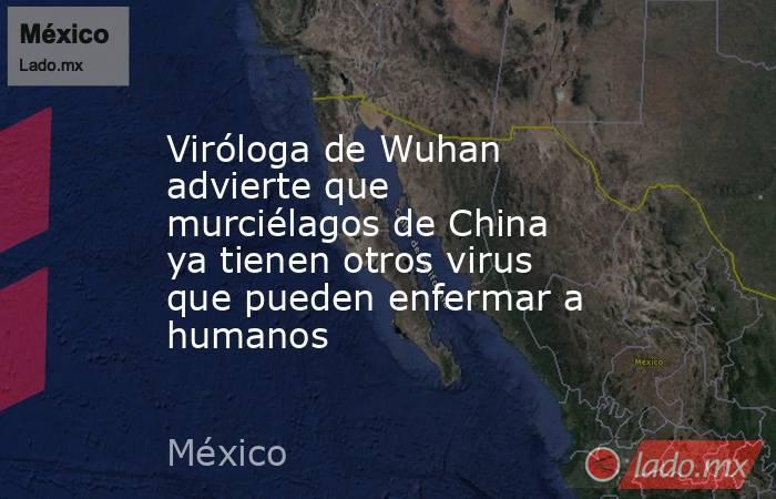Viróloga de Wuhan advierte que murciélagos de China ya tienen otros virus que pueden enfermar a humanos. Noticias en tiempo real