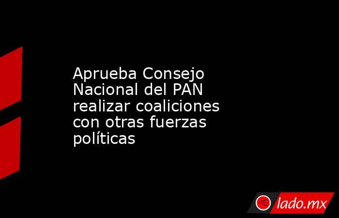 Aprueba Consejo Nacional del PAN realizar coaliciones con otras fuerzas políticas. Noticias en tiempo real