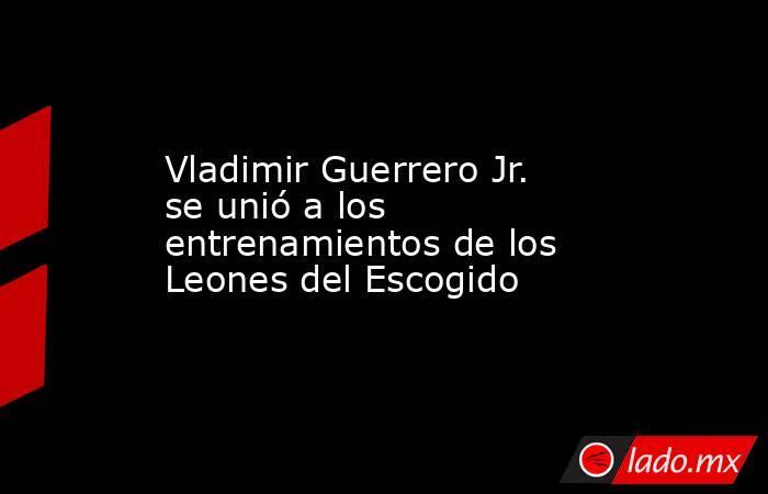 Vladimir Guerrero Jr. se unió a los entrenamientos de los Leones del Escogido. Noticias en tiempo real
