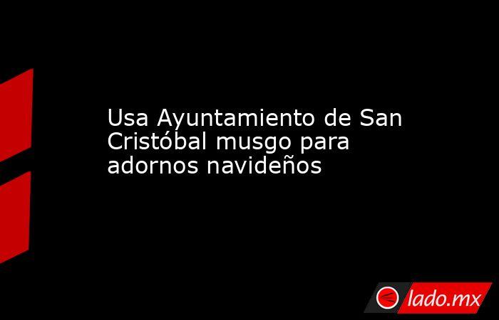 Usa Ayuntamiento de San Cristóbal musgo para adornos navideños. Noticias en tiempo real