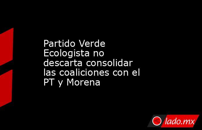 Partido Verde Ecologista no descartaconsolidar las coaliciones con el PT y Morena . Noticias en tiempo real