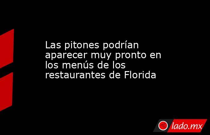 Las pitones podrían aparecer muy pronto en los menús de los restaurantes de Florida. Noticias en tiempo real