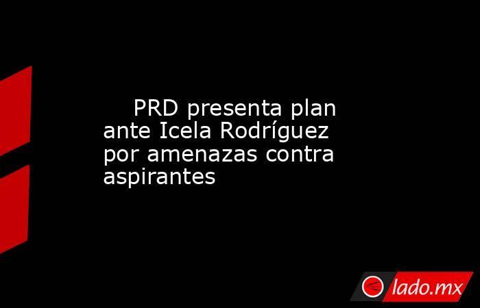 PRD presenta plan ante Icela Rodríguez por amenazas contra aspirantes. Noticias en tiempo real