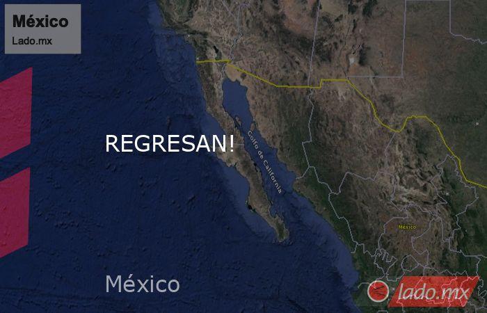 REGRESAN!. Noticias en tiempo real
