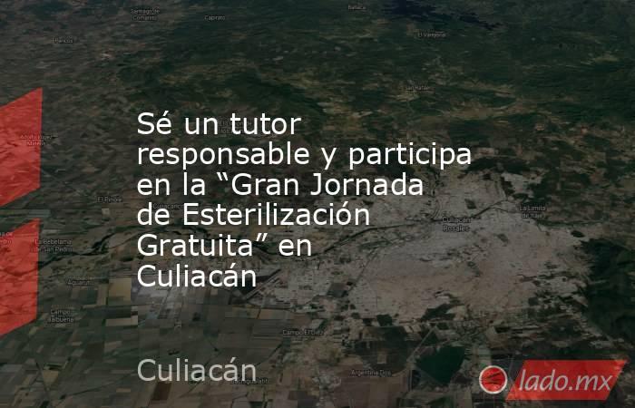 """Sé un tutor responsable y participa en la """"Gran Jornada de Esterilización Gratuita"""" en Culiacán. Noticias en tiempo real"""