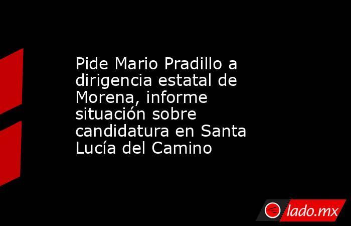 Pide Mario Pradillo a dirigencia estatal de Morena, informe situación sobre candidatura en Santa Lucía del Camino. Noticias en tiempo real
