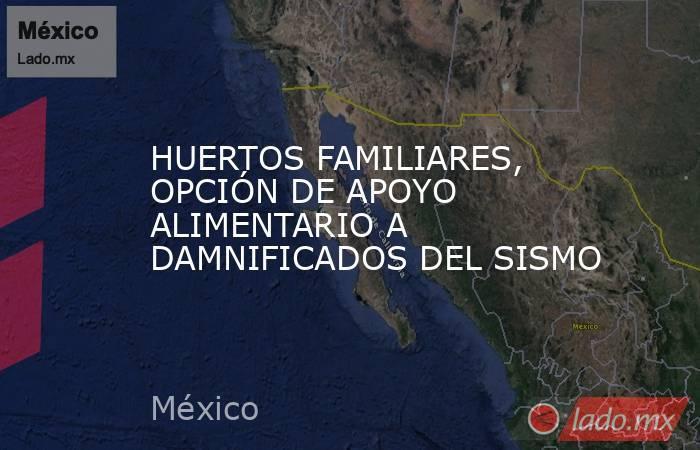 HUERTOS FAMILIARES, OPCIÓN DE APOYO ALIMENTARIO A DAMNIFICADOS DEL SISMO. Noticias en tiempo real