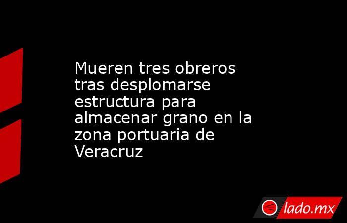 Mueren tres obreros tras desplomarse estructura para almacenar grano en la zona portuaria de Veracruz. Noticias en tiempo real