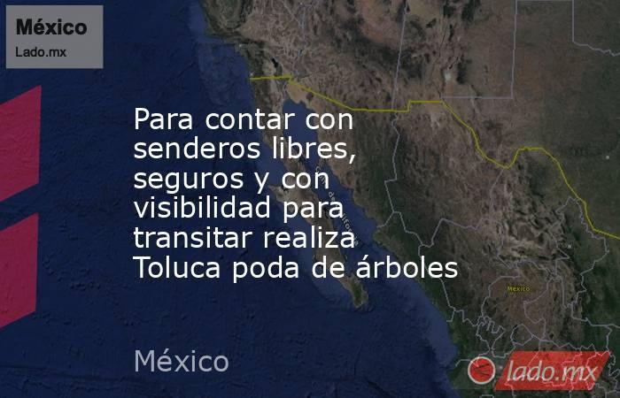 Para contar con senderos libres, seguros y con visibilidad para transitar realiza Toluca poda de árboles. Noticias en tiempo real