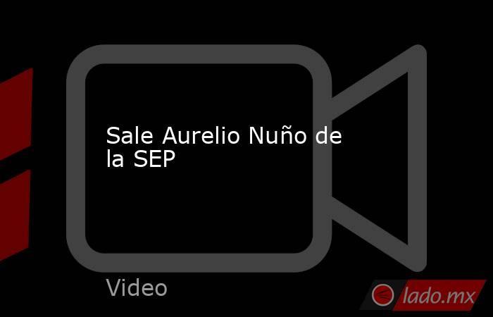Sale Aurelio Nuño de la SEP. Noticias en tiempo real