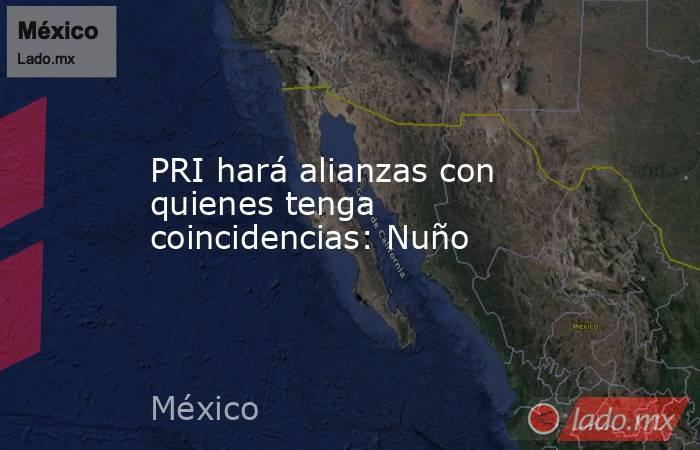 PRI hará alianzas con quienes tenga coincidencias: Nuño. Noticias en tiempo real