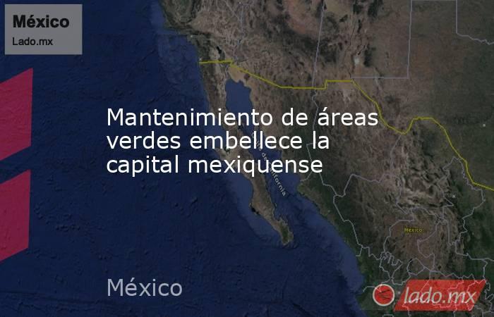 Mantenimiento de áreas verdes embellece la capital mexiquense. Noticias en tiempo real