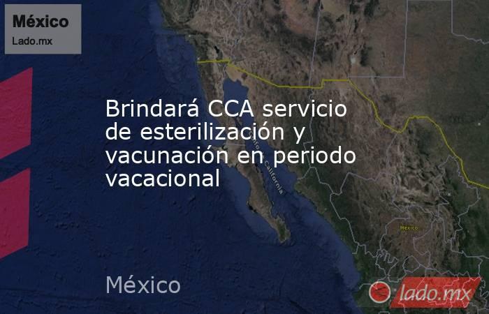 Brindará CCA servicio de esterilización y vacunación en periodo vacacional. Noticias en tiempo real