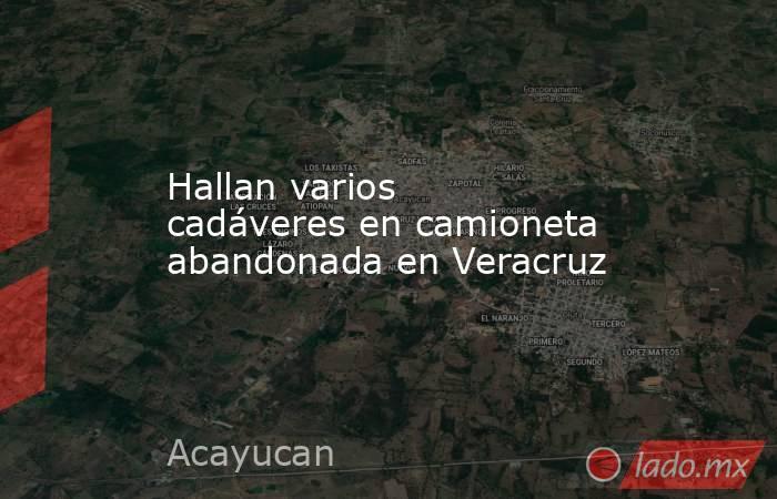 Hallan varios cadáveres en camioneta abandonada en Veracruz. Noticias en tiempo real
