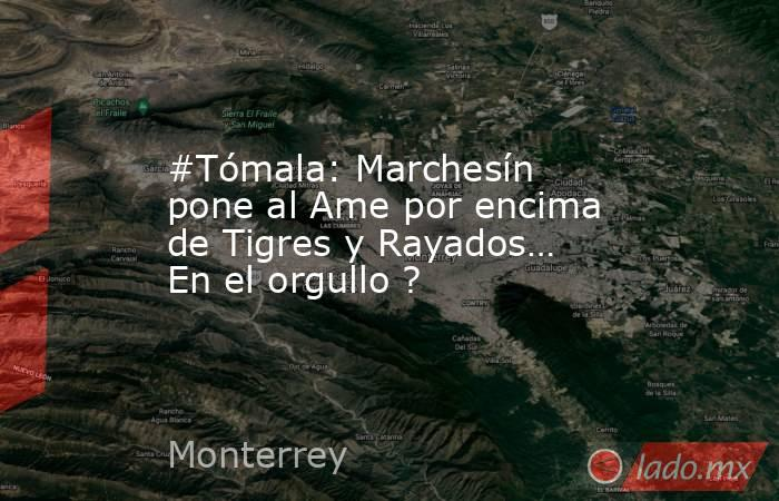 #Tómala: Marchesín pone al Ame por encima de Tigres y Rayados… En el orgullo ?. Noticias en tiempo real