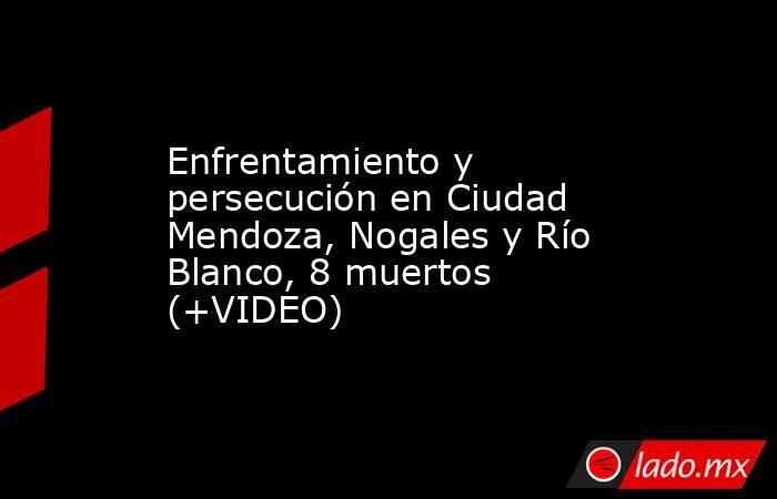 Enfrentamiento y persecución en Ciudad Mendoza, Nogales y Río Blanco, 8 muertos (+VIDEO). Noticias en tiempo real